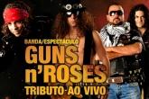 Guns n Roses - Live Tribute Show